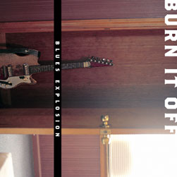Blues Explosion Burn It PROMO CDS Dj Shadow