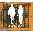 1 Giant Leap Braided Hair CDS