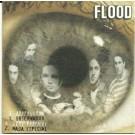 Flood Observador CDS