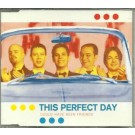 this perfect day could have been friends CDS
