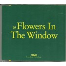 Travis Flowers in the window PROMO CDS