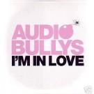 Audio Bullys I