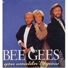 Bee Gees You Wouldn't Know CD