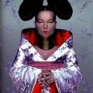 Bjork Homogenic Euro CD