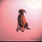 Dakar & Grinser I Wanna Be Your Dog PROMO CDS