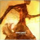 Divine Comedy love what you do PROMO CDS