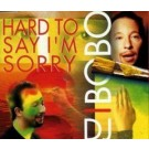 DJ BoBo Hard To Say I