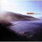 Incubus Morning View Enhanced CD