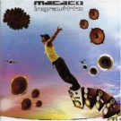 Macaco Ingravitto CDS