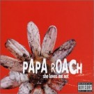 Papa Roach She Loves Me Not [CD 1] CDS