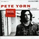 Pete Yorn The Day I Forgot 3 BONUS Tracks 2 VIDEO CD