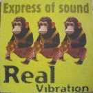 Express Of Sound Real Vibration 12""