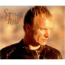 Sting Desert Rose PROMO CDS