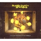 Super Furry Animals It's Not The End Of The World? CD