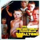 The Dysfunctional Psychedelic Waltons All Over My Face CD
