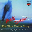 The Gary Tesca Orchestra Private Dancer/The Tina Turner Story Vol.1 CD