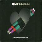 UnkleJam What Am I Fighting For? PROMO CDS